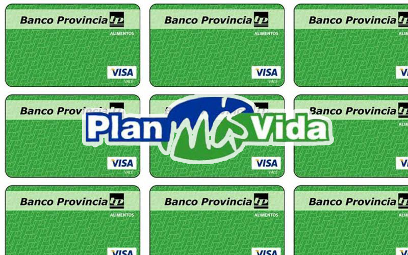 PLAN MAS VIDA General Pueyrredon